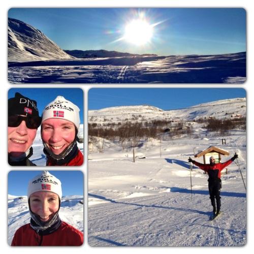 Med strålende sol og lite vind ble det en super tur fra Haugastøl opp mot Hallingskarvet. Godt kledd og med perfekt smurte ski var det bare å kose seg i solskinnet.