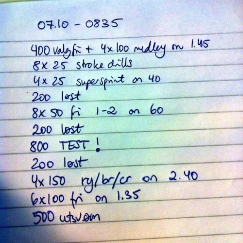 svømmeprogram 5