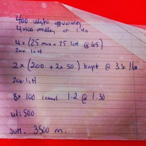 svømmeprogram 6
