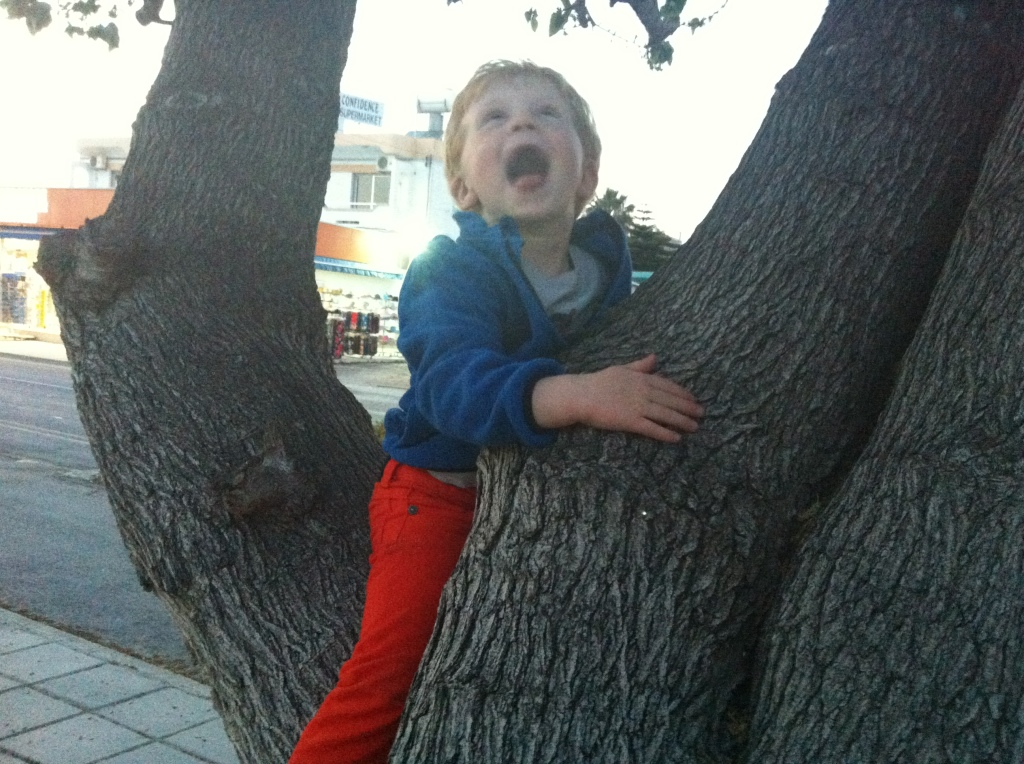 Vi går alltid en liten tur etter middag. Magnus har lært seg å klatre i trær her nede, og vil gjerne opp i hvert eneste lille (og store) tre vi ser. Blid gutt da :-)