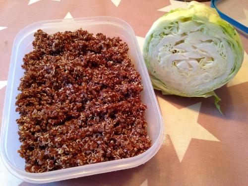 Ferdig kokt quinoa og frisk kål fikk være med i oppskriften i dag. Egentlig hadde jeg tenkt å servere ovnsbakte søtpotetbåter med rømmedip til også. Men det var mer enn nok mat i gryta, så da droppet jeg søtpotetene.