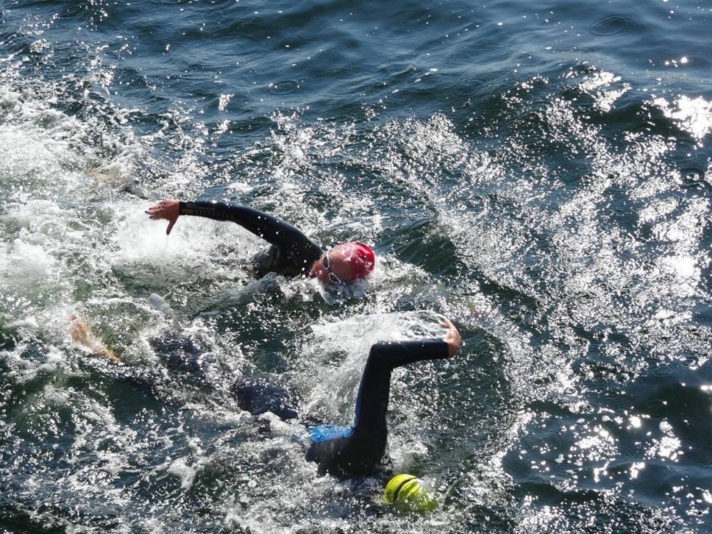 Å svømme i open water kan være en tøff affære. Vi lærer deg det du trenger å vite for å få en god opplevelse.